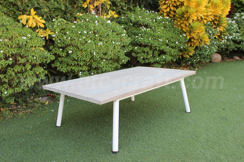 Outdoor Unique Wicker Conversation Set RASF-190 Wooden Table